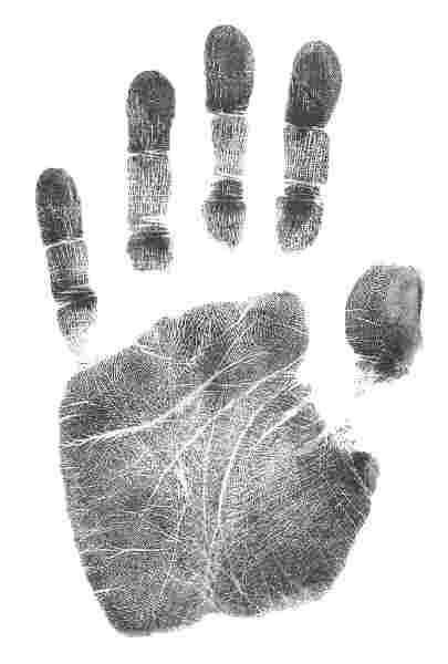 The Meaning of the Five Fingers